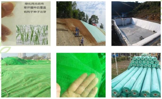 绿化无纺布厂家大量批发定做